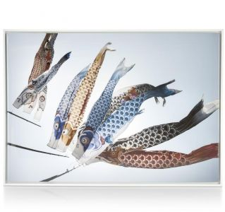 Schilderij Fish Kyte - 74 X 104 Cm