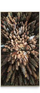 schilderij Pine Woods