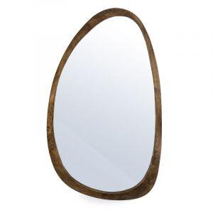 spiegel Plecto